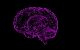 Правила выполнения заговоров для улучшения памяти