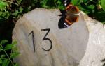 Значение числа 13 в жизни человека
