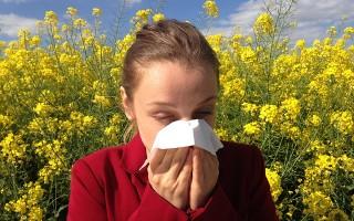 Применение заговоров против аллергии