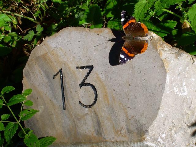 У числа 13 много значений